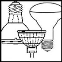 Flood and Halogen Light Bulbs